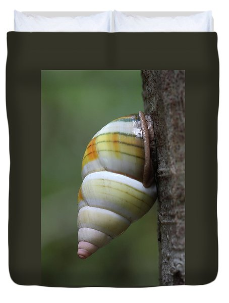 Florida Tree Snail Duvet Cover