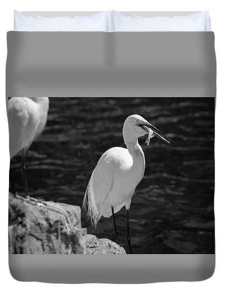 Duvet Cover featuring the photograph Florida White Egret by Jason Moynihan