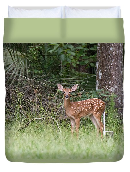 Duvet Cover featuring the photograph Florida Whitetail Spotted Fawn by John Black