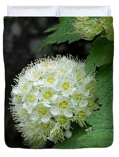 Duvet Cover featuring the photograph Flower Ball by Rod Wiens