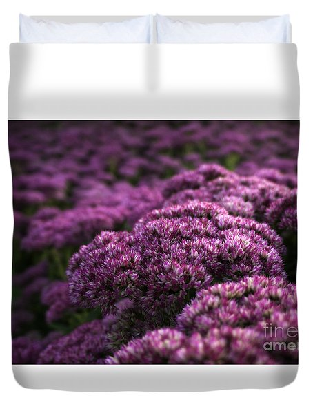 Duvet Cover featuring the photograph Sedum Flower Detail by Inge Riis McDonald