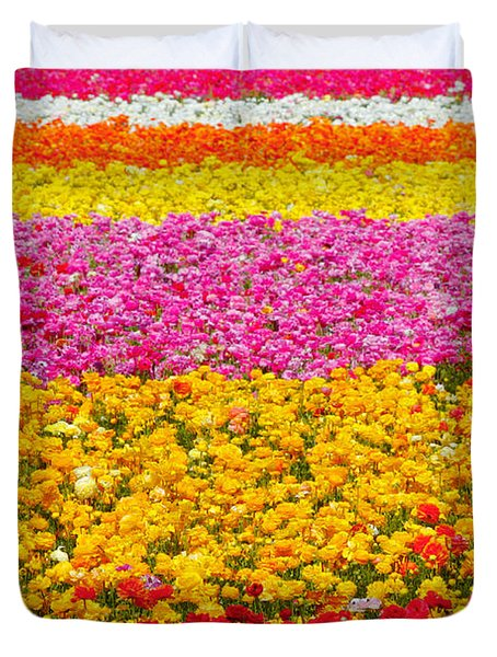 Flower Fields Carlsbad Ca Giant Ranunculus Duvet Cover by Christine Till