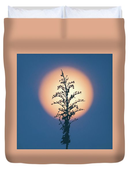 Flower Moon May 2017 Square Duvet Cover by Terry DeLuco