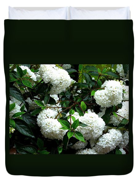 Flower Snow Balls Duvet Cover by Valerie Ornstein