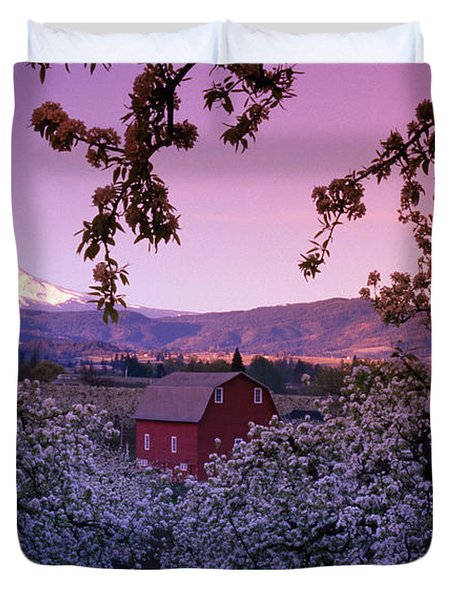 Flowering Apple Trees, Distant Barn Duvet Cover