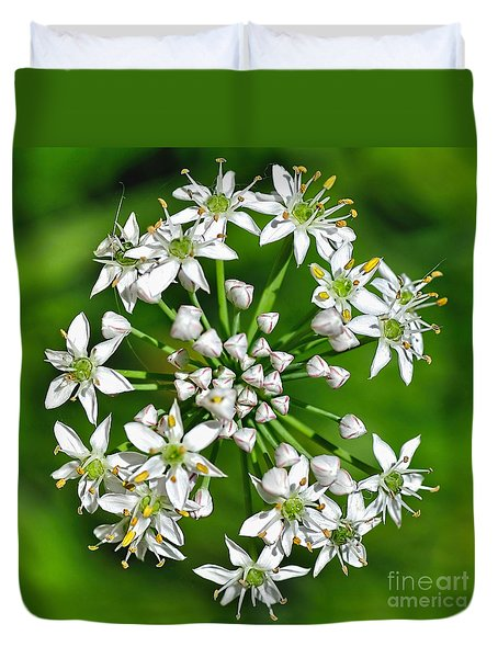 Flowering Garlic Chives Duvet Cover by Kaye Menner