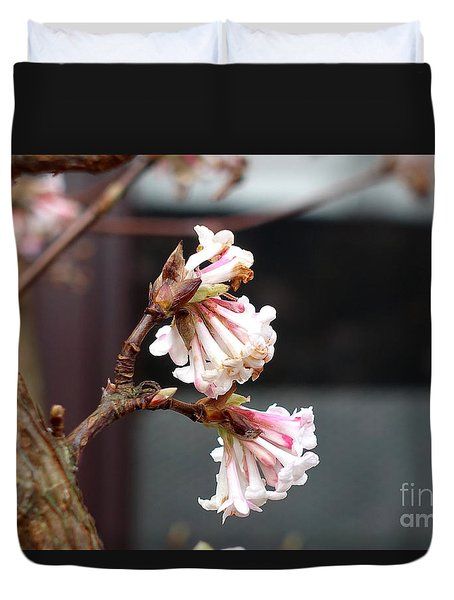 Flowering In December Duvet Cover