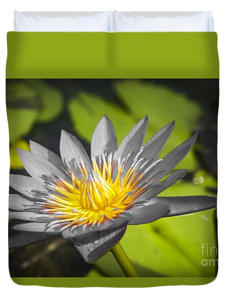 Flowers Of Grey Duvet Cover