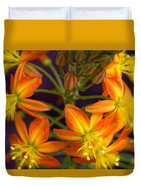 Duvet Cover featuring the photograph Flowers Of Spring by Stephen Anderson