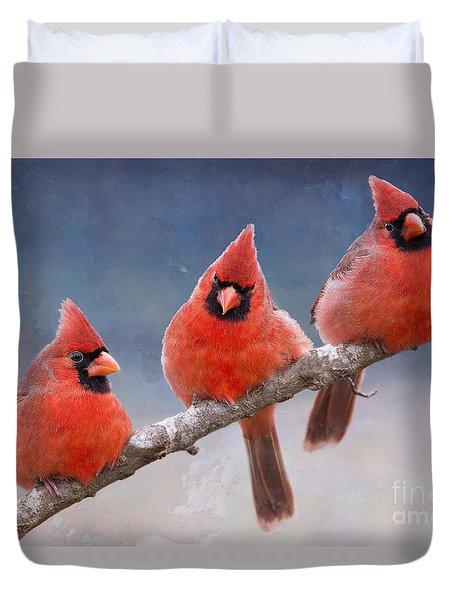 Fluffy Cardinal Trio Duvet Cover