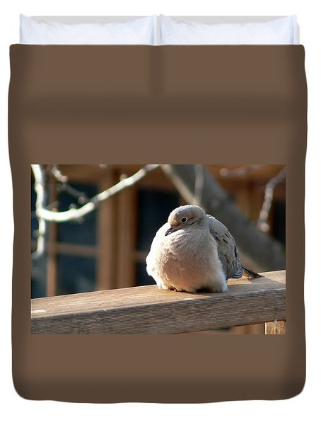 Duvet Cover featuring the photograph Fluffy by Laurel Best