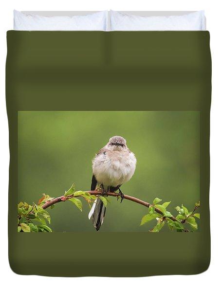 Fluffy Mockingbird Duvet Cover