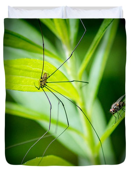 Fly And The Spider Duvet Cover