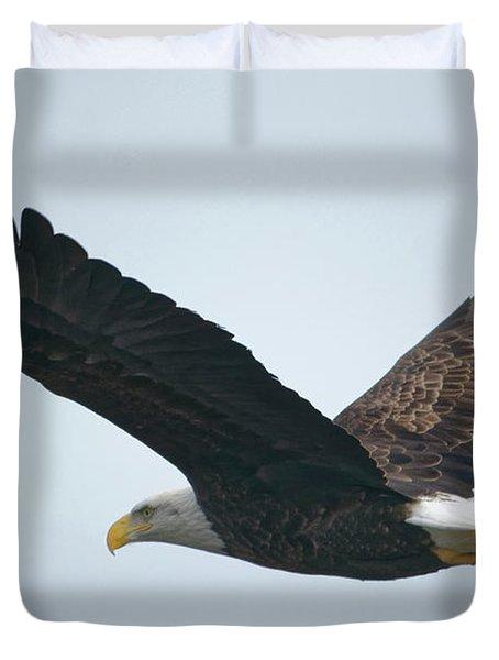 Flying Bald Eagle Duvet Cover