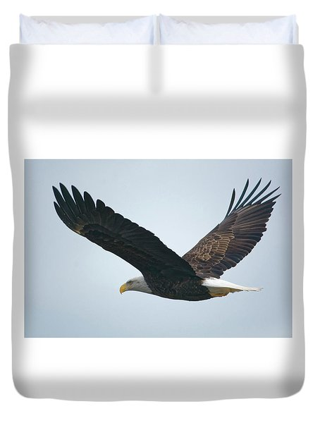 Flying Bald Eagle Duvet Cover