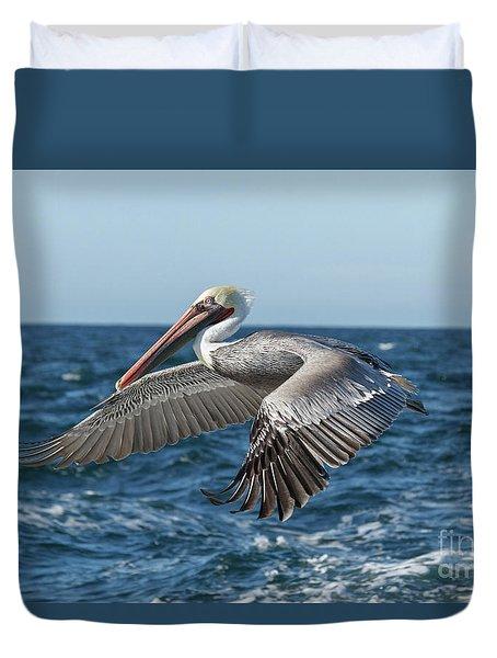 Flying Brown Pelican Duvet Cover by Robert Bales
