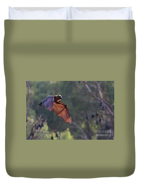 Flying Fox In Mid Air Duvet Cover