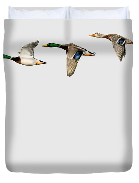 Flying Mallards Duvet Cover