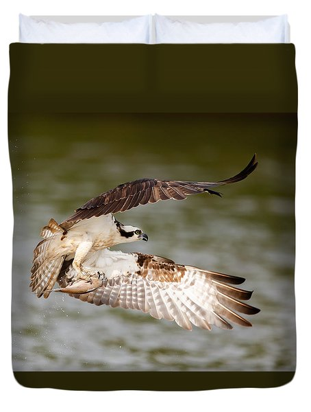 Flying Osprey With Fish Duvet Cover