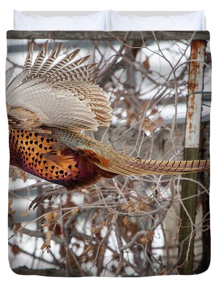 Flying Pheasant Duvet Cover