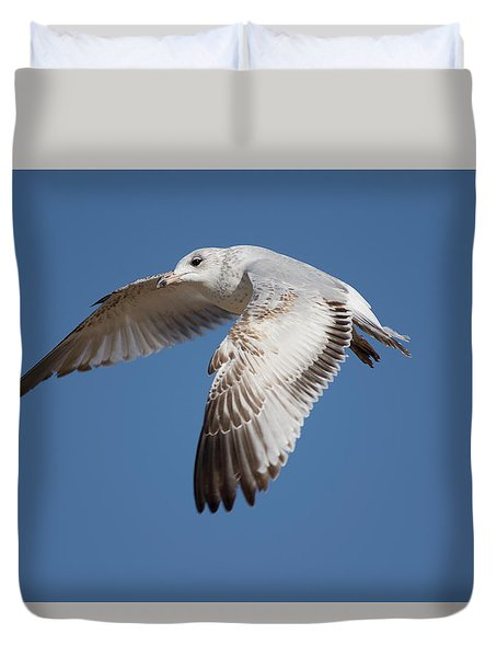 Flying Seagull Duvet Cover