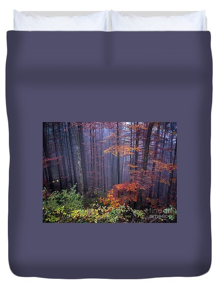 Duvet Cover featuring the photograph Fog And Forest Colours by Elena Elisseeva
