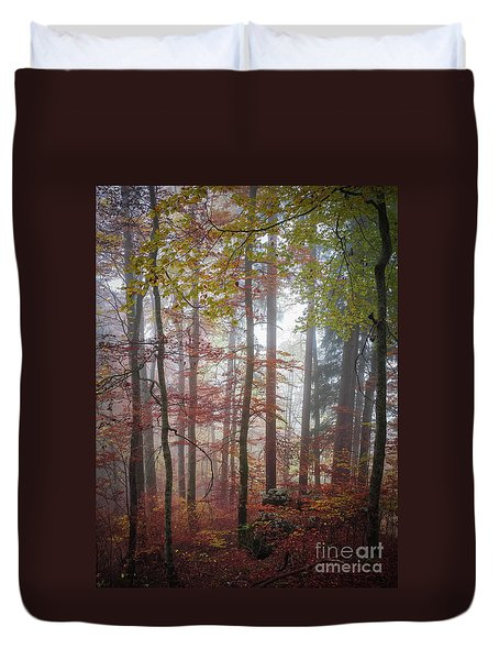 Duvet Cover featuring the photograph Fog In Autumn Forest by Elena Elisseeva