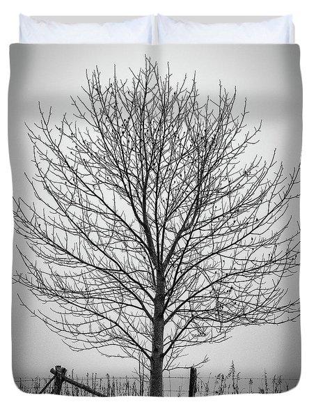 Foggy Lone Tree Hill Fine Art Duvet Cover
