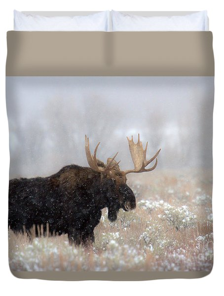 Duvet Cover featuring the photograph Foggy Moose Silhouette by Adam Jewell
