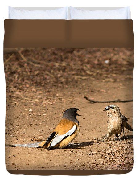 Forceful - Face Off  Duvet Cover by Ramabhadran Thirupattur