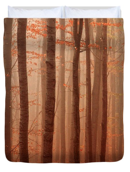 Forest Barcode Duvet Cover by Evgeni Dinev