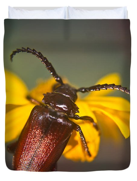 Forest Beetle Duvet Cover