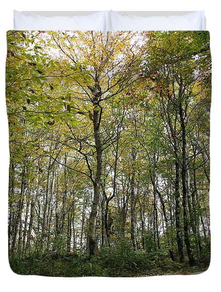 Forest Canopy Duvet Cover
