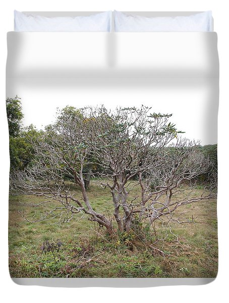 Forest Character Tree Duvet Cover