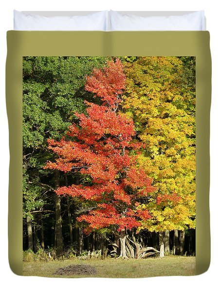 Forest Door Duvet Cover
