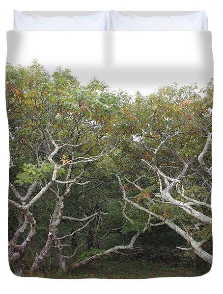 Forest Entry Duvet Cover