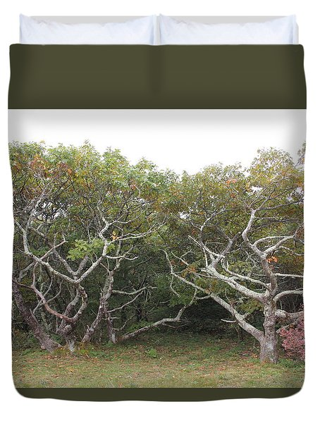 Forest Entry Duvet Cover