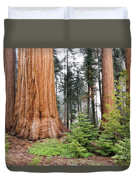 Duvet Cover featuring the photograph Forest Growth by Peggy Hughes