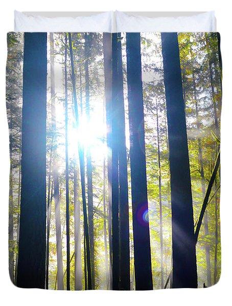 Forest Light Rays Duvet Cover