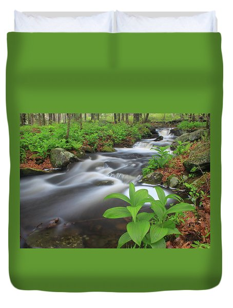 Forest Stream And False Hellabore In Spring Duvet Cover by John Burk