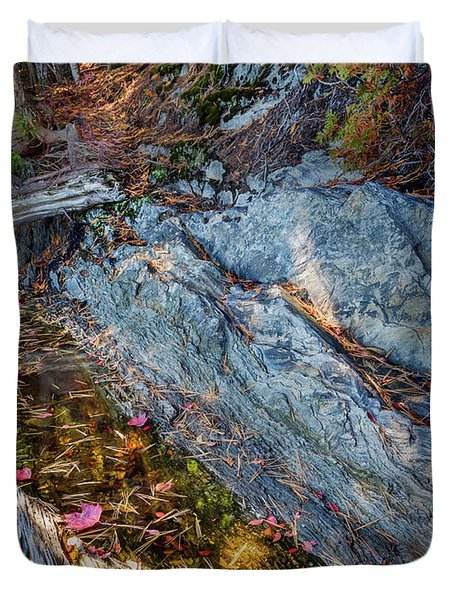 Forest Tidal Pool In Granite, Harpswell, Maine  -100436-100438 Duvet Cover