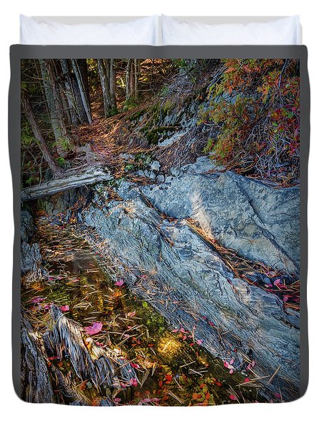Duvet Cover featuring the photograph Forest Tidal Pool In Granite, Harpswell, Maine  -100436-100438 by John Bald