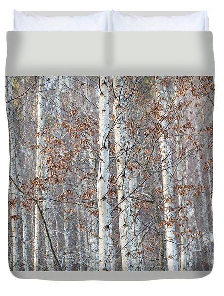 Forest With Birch Trees In December Duvet Cover