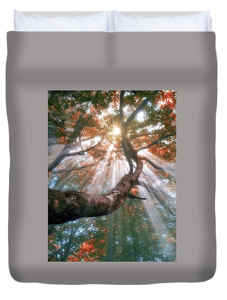 Forest With Fog And Sun Rays Duvet Cover