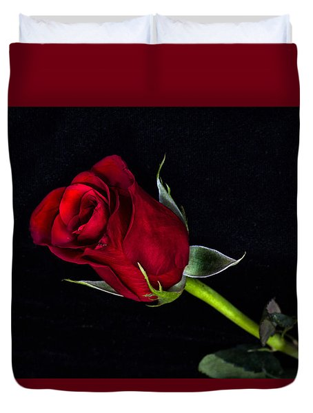 Forever Lasting Rose  Duvet Cover by Betty Pauwels