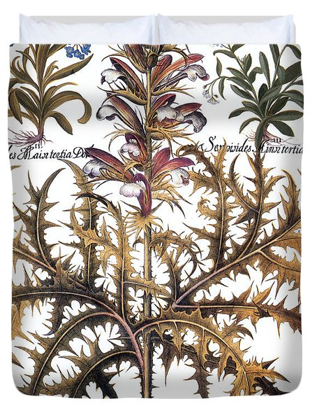 Forget-me-not & Acanthus Duvet Cover by Granger