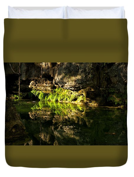 Fossil Reflecting Pool Duvet Cover