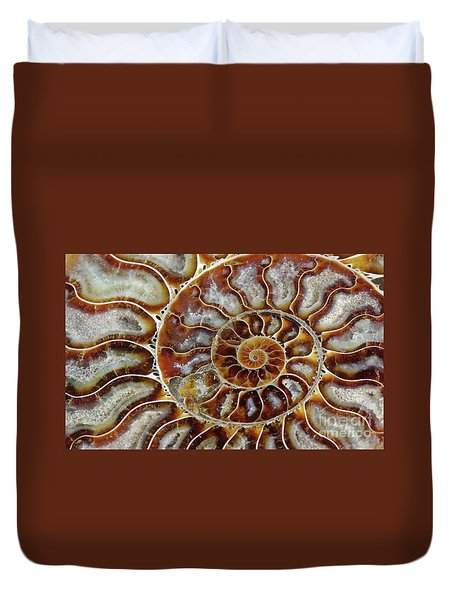 Fossilized Ammonite Spiral Duvet Cover