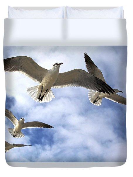 Four Gulls Duvet Cover