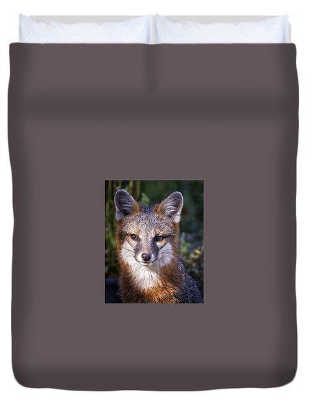 Fox Gaze Duvet Cover